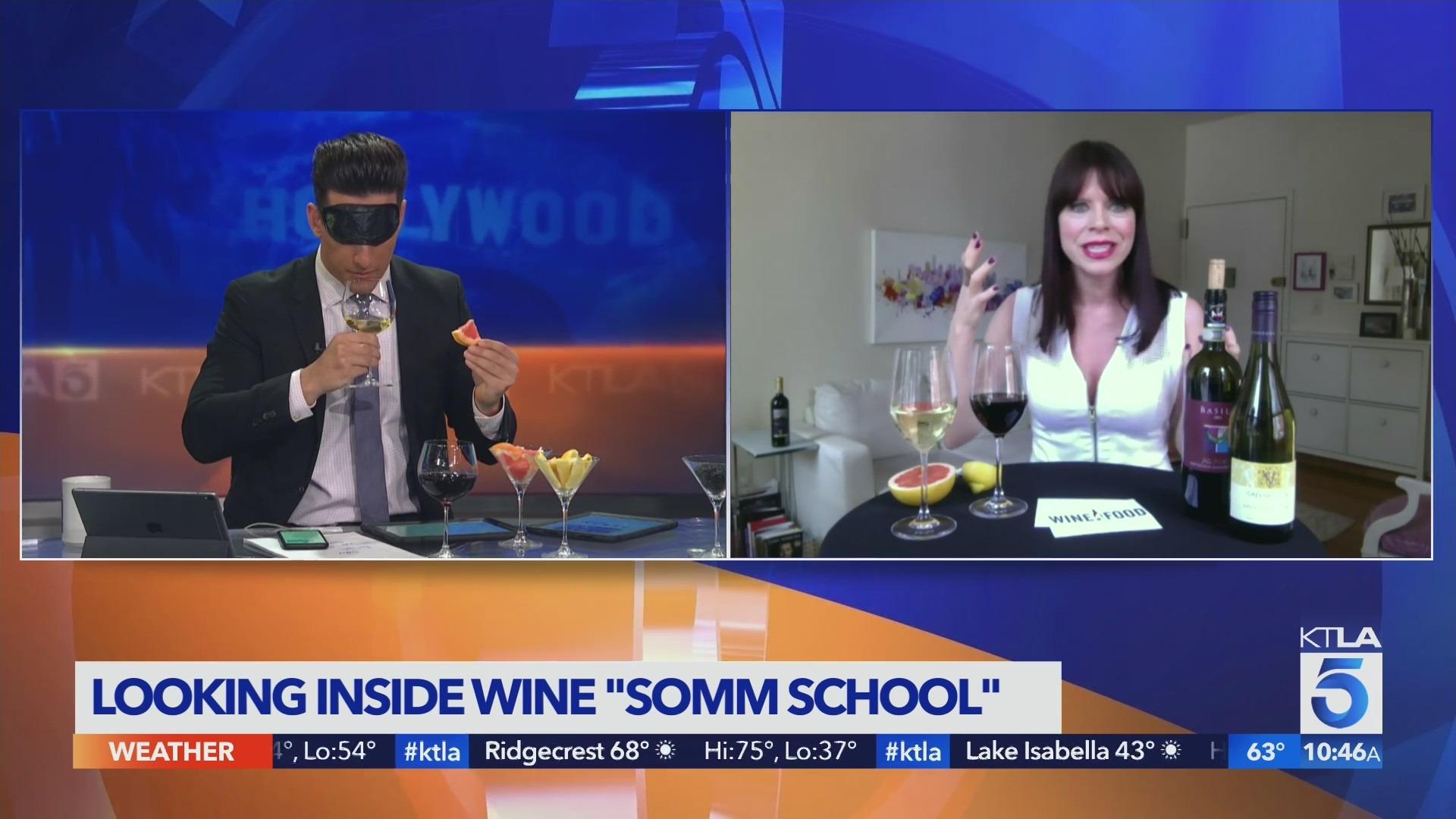 Somm School Insider takes us to wine school