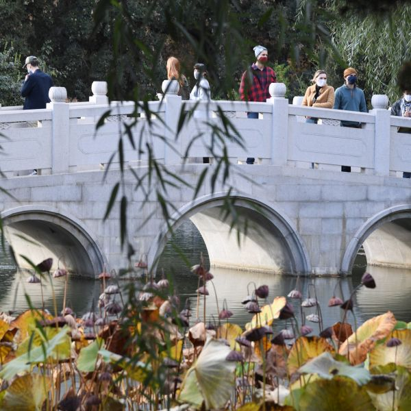 People wearing face covering to prevent the spread of COVID-19 visit the Chinese Garden at The Huntington Library, Art Museum and Botanical Gardens in San Marino on Nov. 7, 2020.(ROBYN BECK/AFP via Getty Images)
