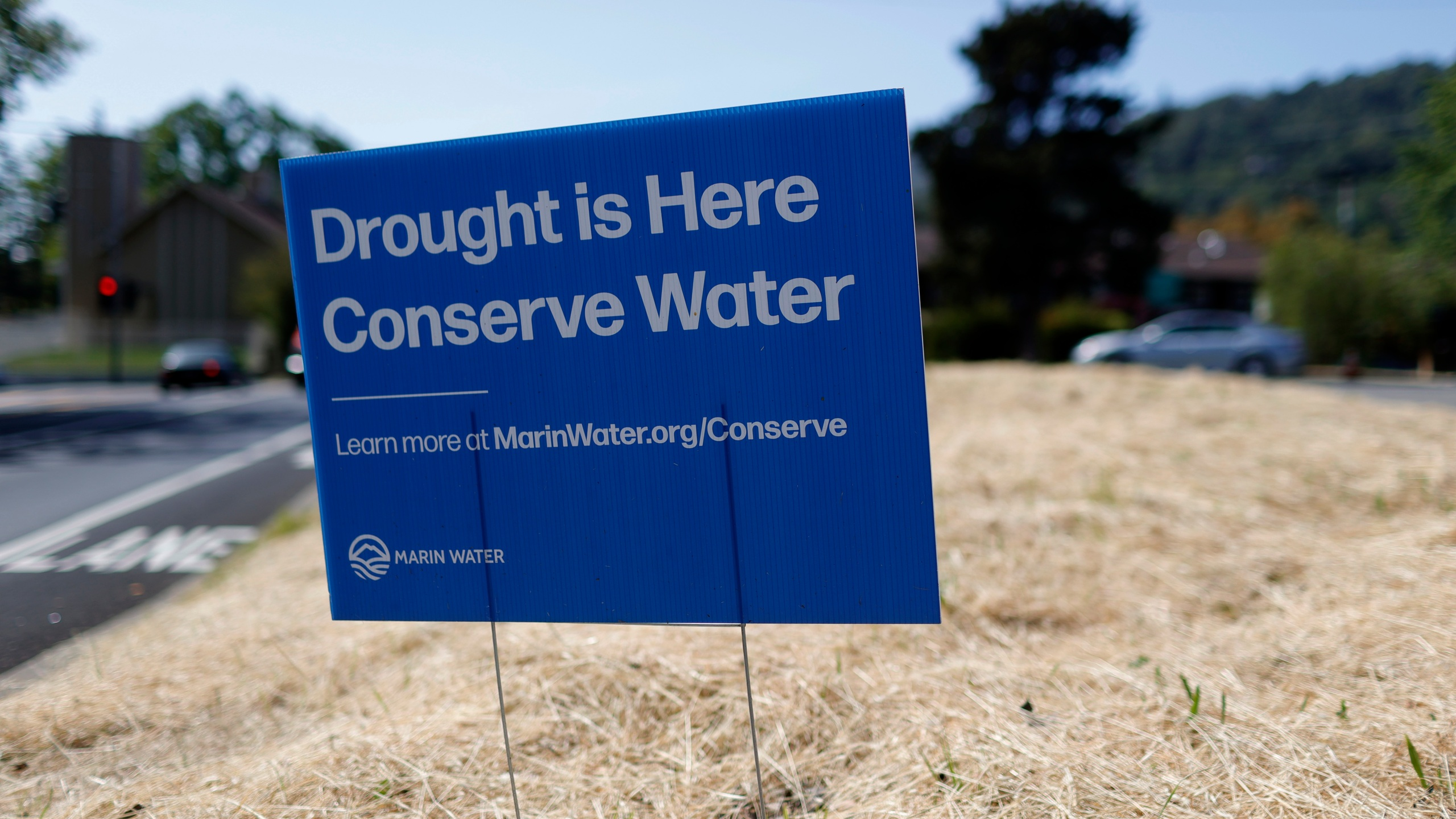 A sign advocating water conservation is posted in a field of dry grass on April 23, 2021 in San Anselmo, California. (Justin Sullivan/Getty Images)