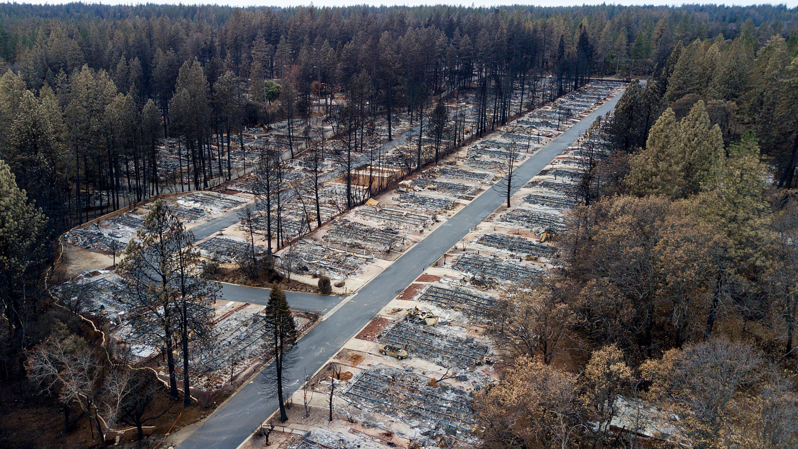 In this Dec. 3, 2018, file photo, charred footprints of homes leveled by the Camp Fire line the streets at the Ridgewood Mobile Home Park retirement community in Paradise, Calif. (AP Photo/Noah Berger, File)