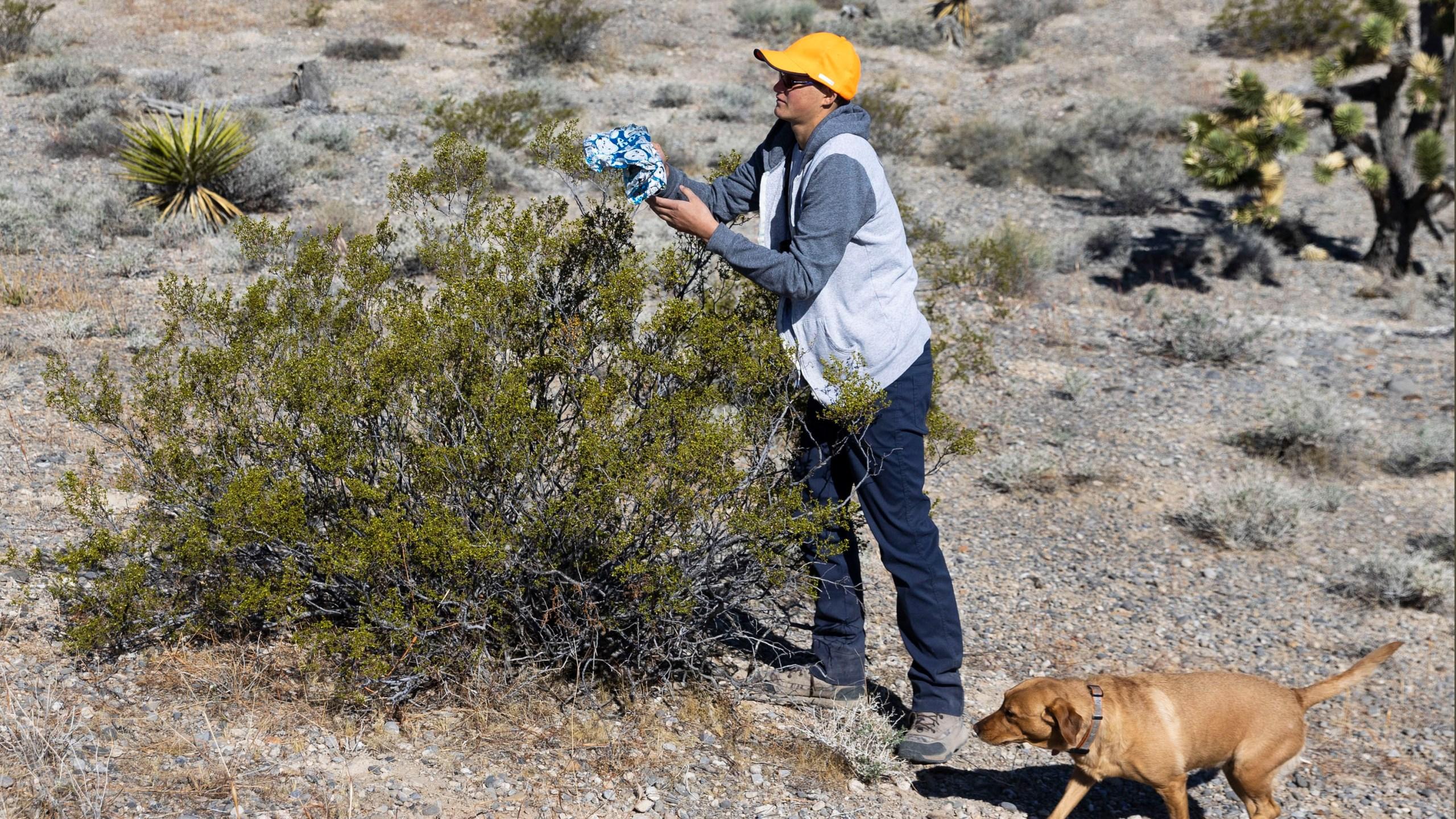 Christian Daniels, 15, retrieves stray balloon from desert areas with his dog Ruby, on Saturday, April 17, 2021, in Las Vegas. (Bizuayehu Tesfaye/Las Vegas Review-Journal via AP)