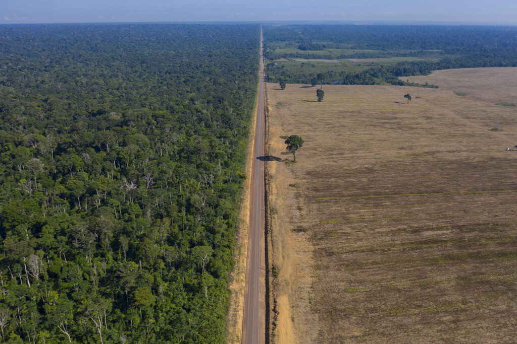 In this Nov. 25, 2019 file photo, highway BR-163 stretches between the Tapajos National Forest, left, and a soy field in Belterra, Para state, Brazil. (AP Photo/Leo Correa, File)