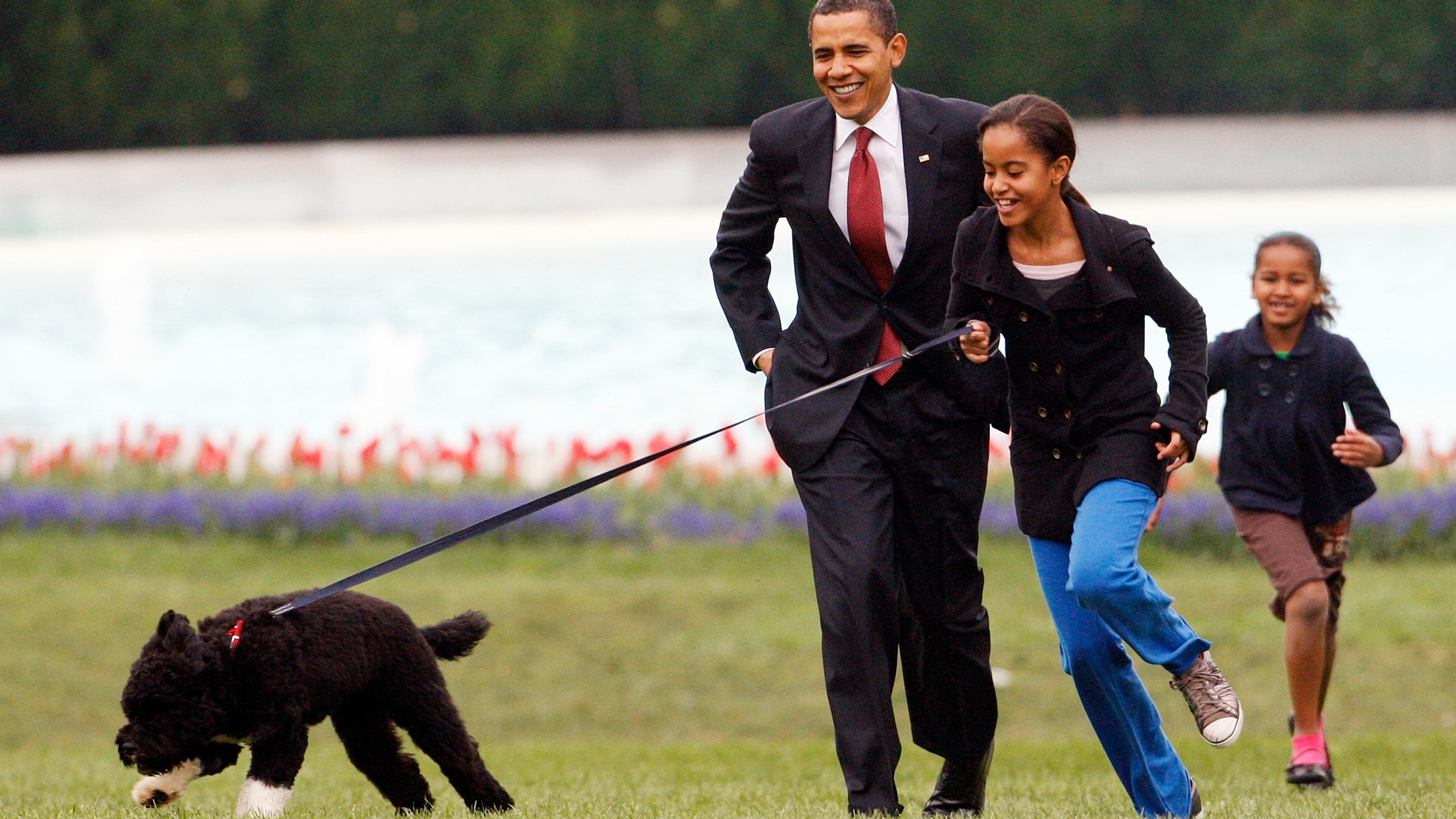 In this April 14, 2009, file photo Malia Obama runs with Bo, followed by President Barack Obama and Sasha Obama, on the South Lawn of the White House in Washington.(AP Photo/Ron Edmonds, File)