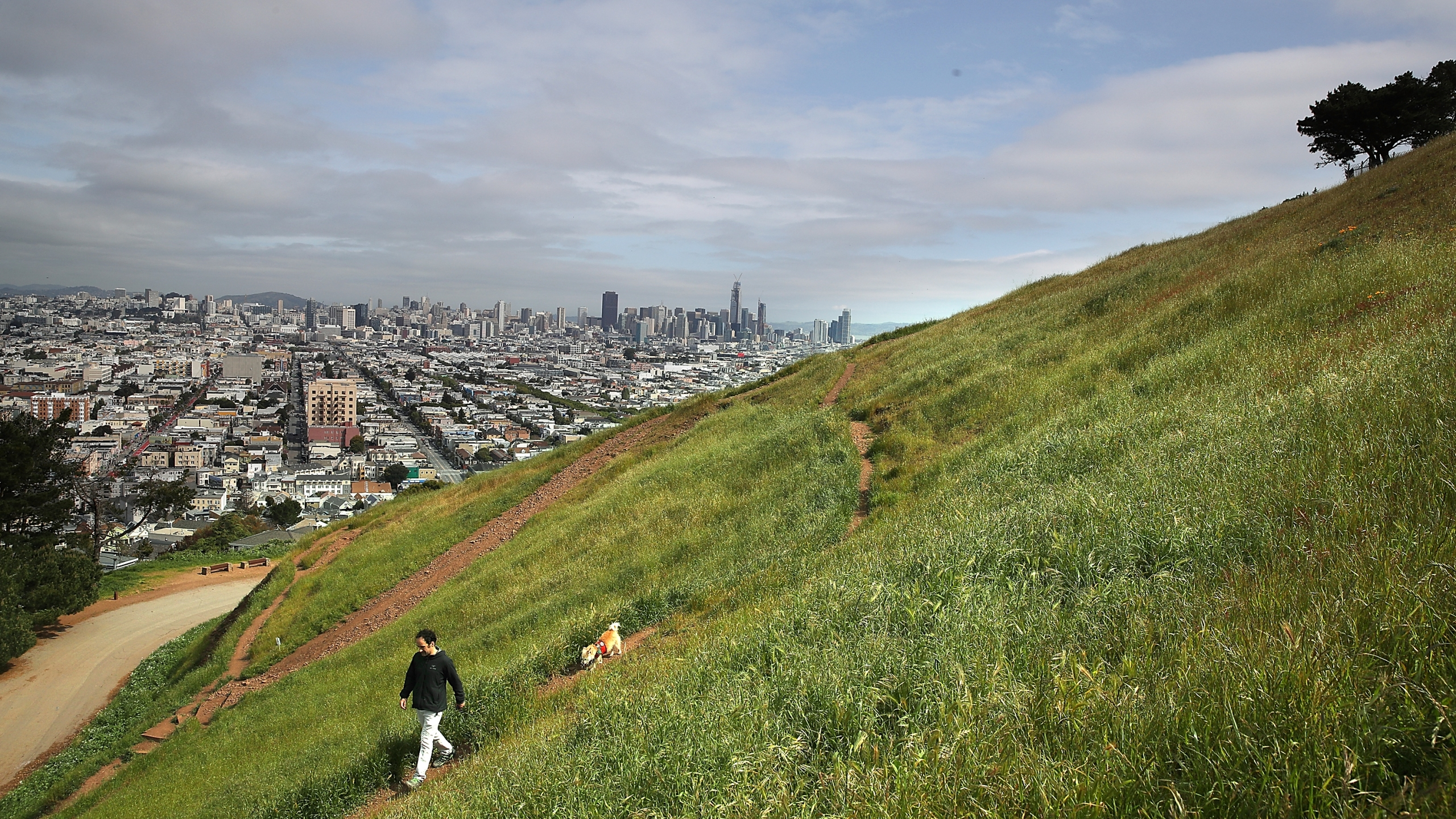 A man walks his dog at Bernal Heights Park in San Francisco in this file photo. (Justin Sullivan/Getty Images)