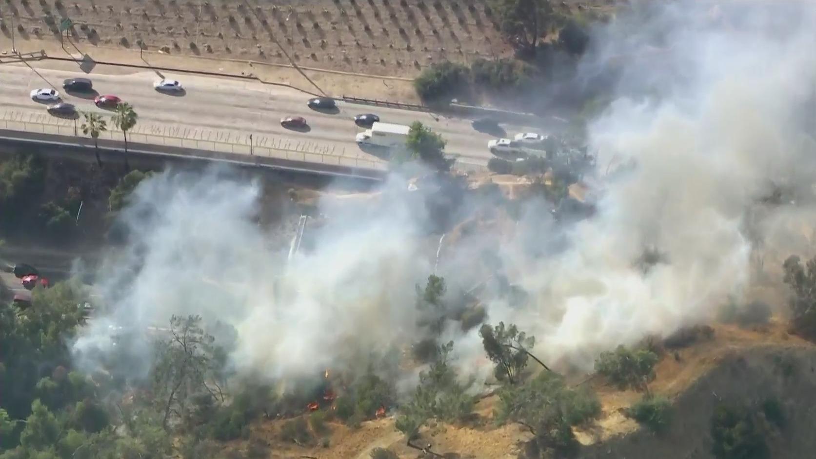 A brush fire burns along the 110 Freeway in Elysian Park on May 21, 2021. (KTLA)