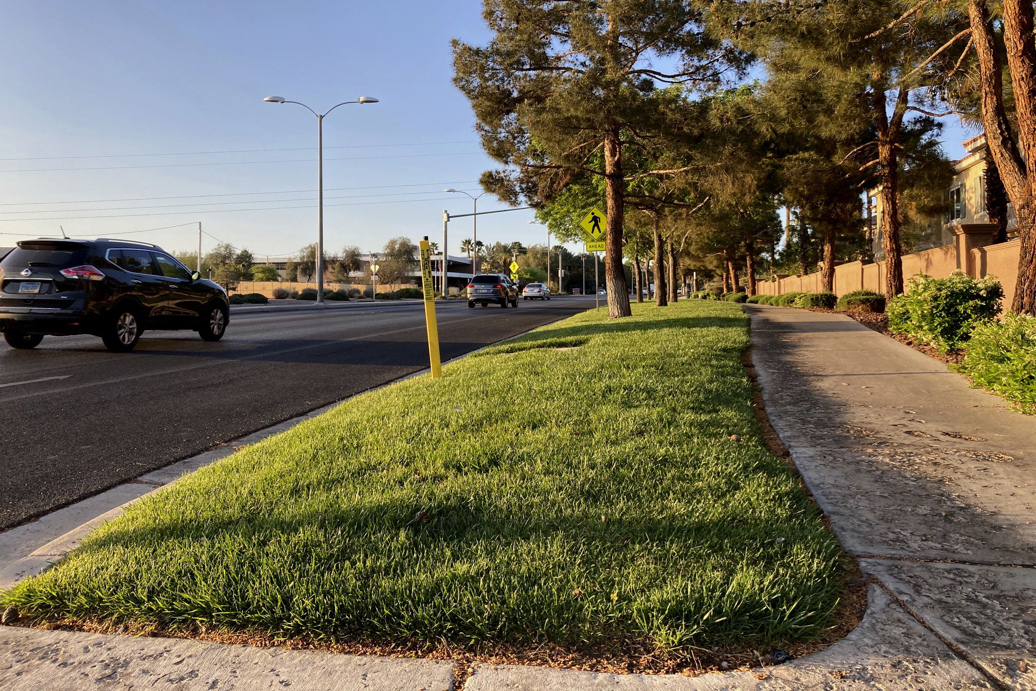 In this April 9, 2021, file photo, traffic passes a grassy landscape on Green Valley Parkway in suburban Henderson, Nev. Nevada Governor Steve Sisolak signed legislation on Friday, June 4 to make the state the first in the nation to ban certain kinds of grass. The measure will ban water users in southern Nevada from planting decorative grass in an effort to conserve water. (AP Photo/Ken Ritter, File)