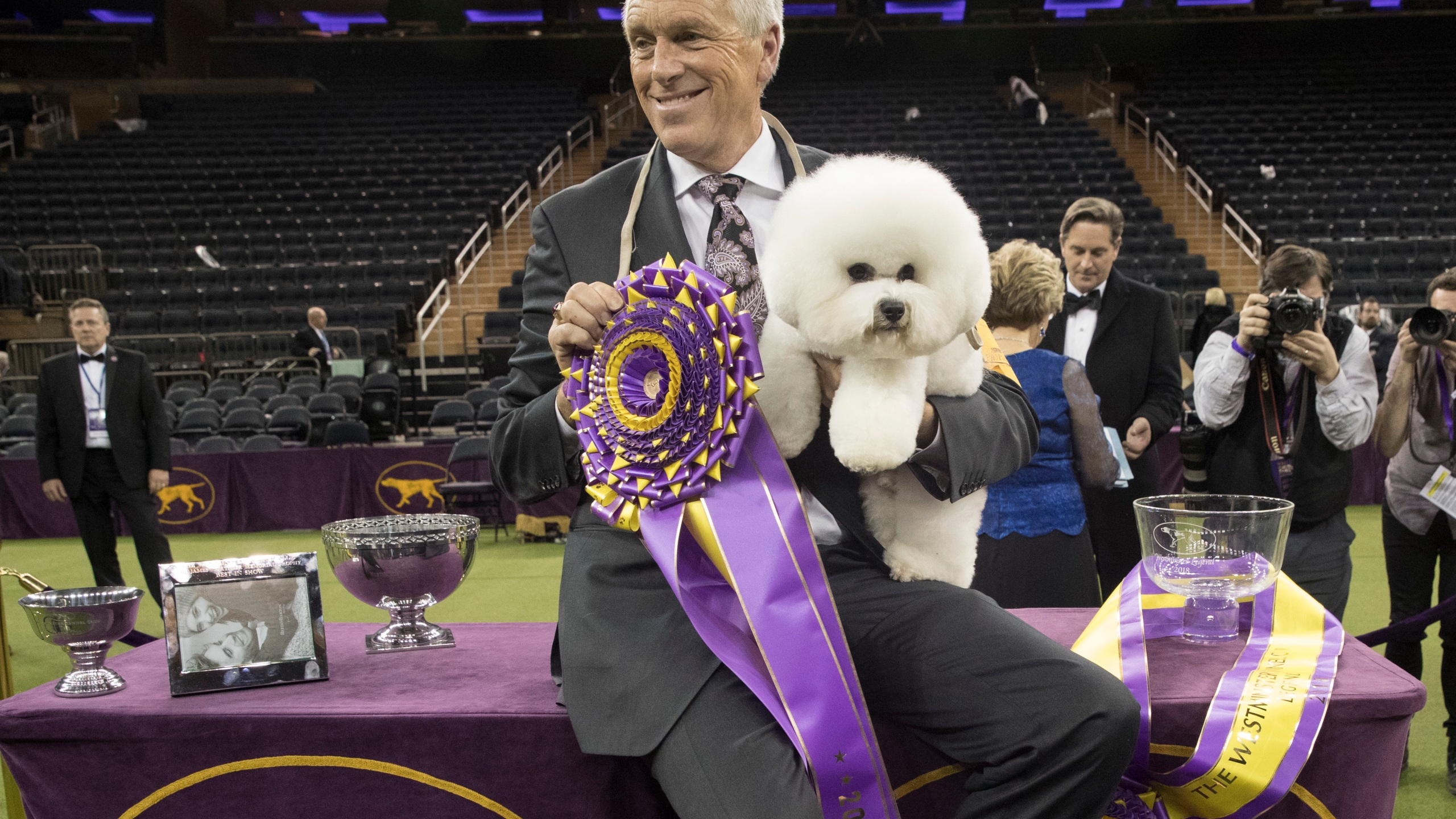 In this Feb. 13, 2018, file photo, handler Bill McFadden poses for photos with Flynn, a bichon frise, after Flynn won best in show during the 142nd Westminster Kennel Club Dog Show, Tuesday, Feb. 13, 2018, at Madison Square Garden in New York. McFadden, who has guided two Westminster winners, was rear-ended and injured while driving a van full of dogs cross-country to the show, his wife and fellow star handler, Taffe McFadden, said Saturday, June 12, 2021. (AP Photo/Mary Altaffer, File)