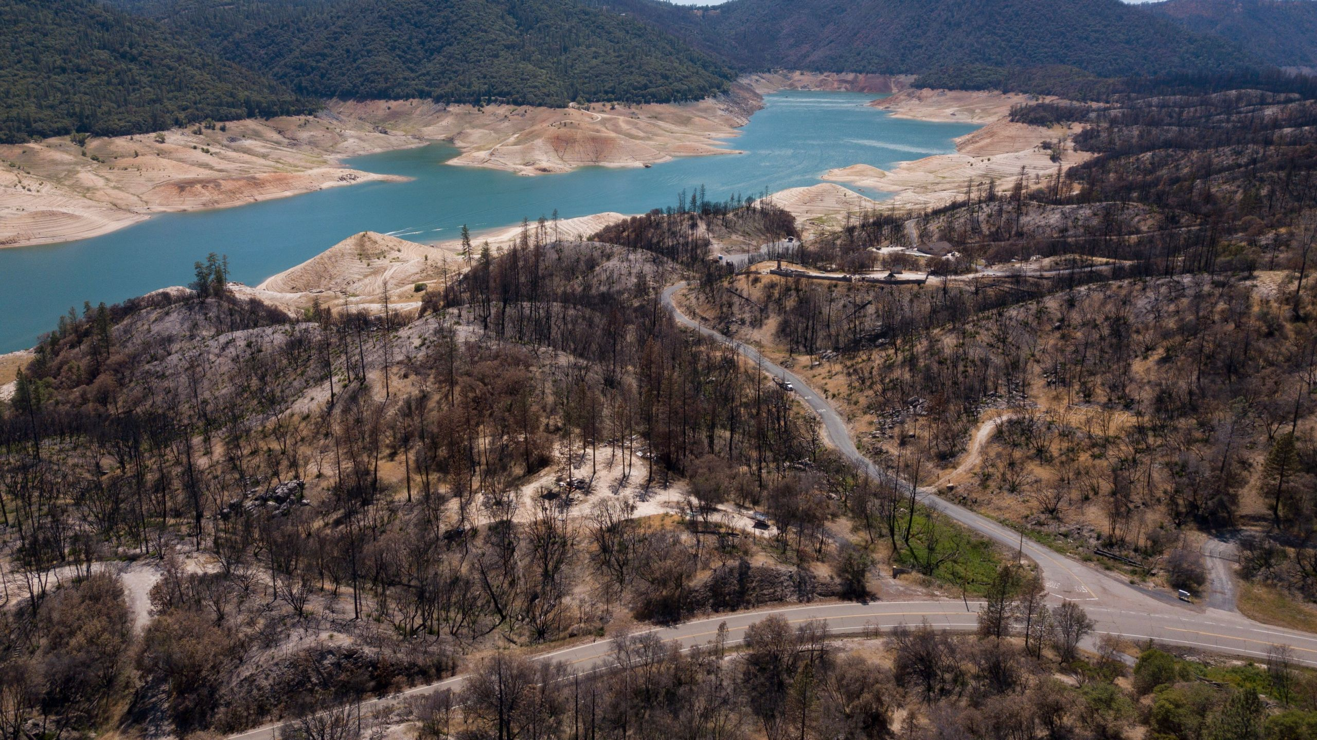 In this aerial image, dead trees burned in a wildfire stand as dry land is exposed on the banks of Lake Oroville reservoir due to low water levels during the California drought emergency on May 25, 2021 in Oroville, California. (Patrick T. Fallon/AFP via Getty Images)
