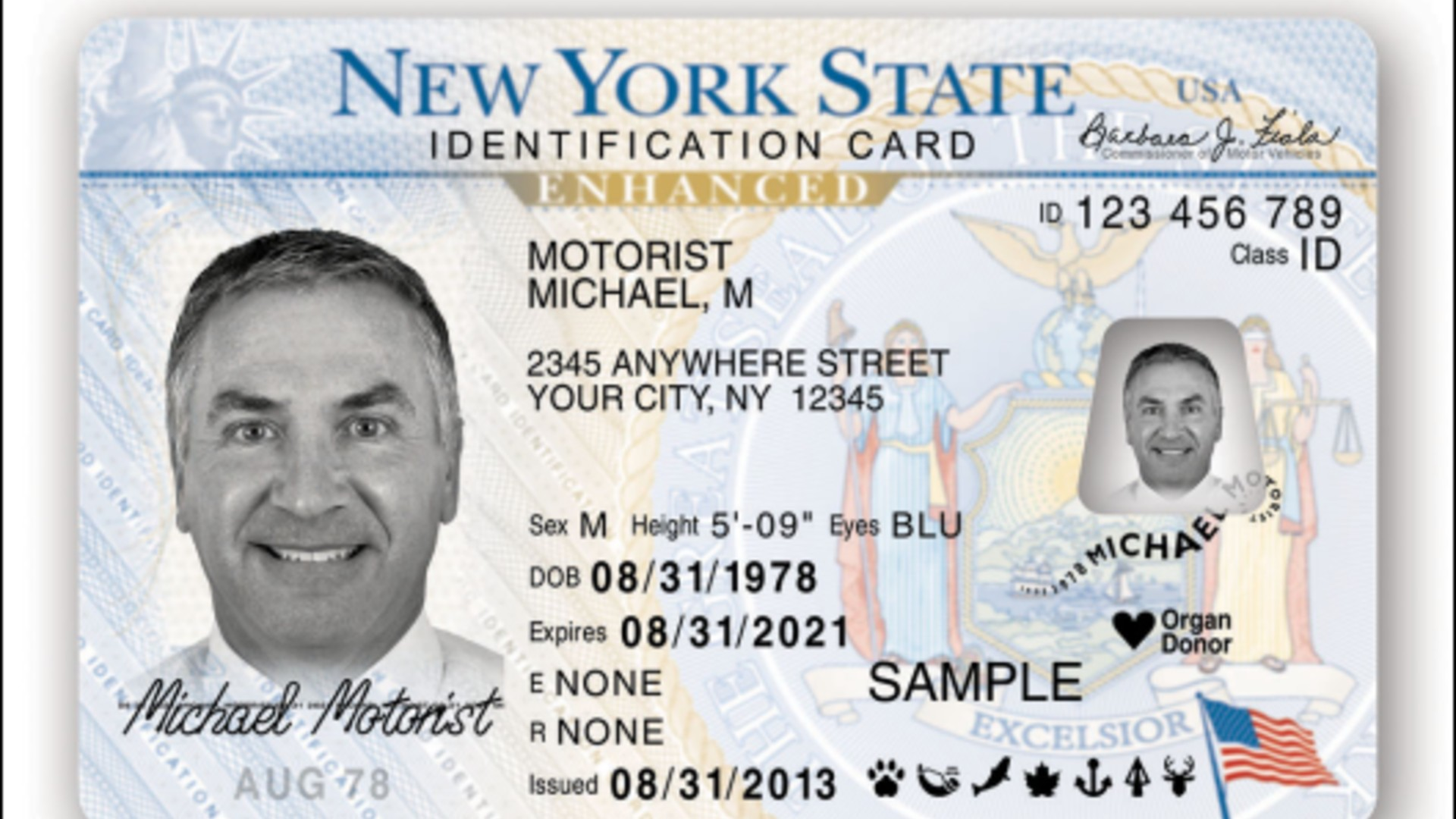 A New York ID card is seen in a photo released by the the state's DMV.