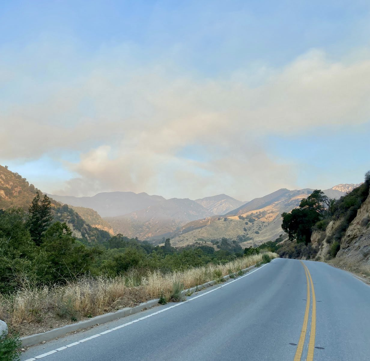 The Willow fire in Los Padres National Forest has grown to more than 2,800 acres, with an estimated containment date of July 11, according to the U.S. Forest Service.(Los Padres National Forest)