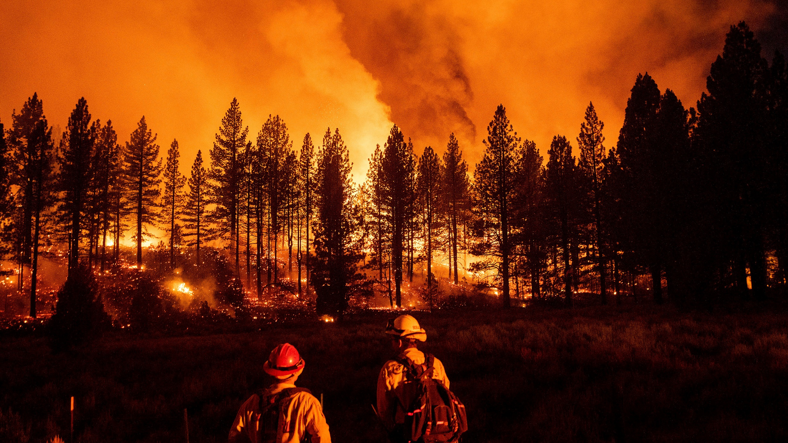 Firefighters monitor the Sugar Fire, part of the Beckwourth Complex Fire, as it burns at Frenchman Lake in Plumas National Forest on July 8, 2021. (Noah Berger / Associated Press)