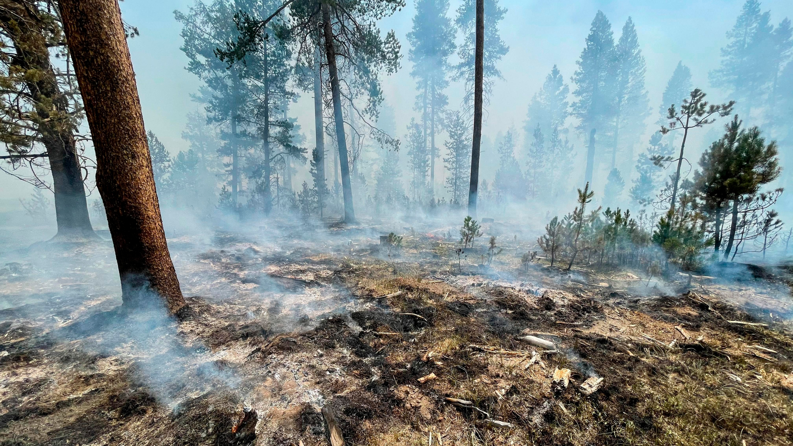 In this photo provided by the Bootleg Fire Incident Command, the Bootleg Fire is seen smoldering in southern Oregon, Saturday, July 17, 2021. The destructive Bootleg Fire, one of the largest in modern Oregon history, has already burned more than 476 square miles (1,210 square kilometers), an area about the size of Los Angeles. Meteorologists predicted critically dangerous fire weather through at least Monday with lightning possible in both California and southern Oregon. (Bootleg Fire Incident Command via AP)
