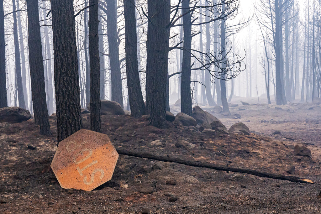 A sign damaged by the Bootleg Fire lies on the ground on Thursday, July 22, 2021, near Paisley, Ore. (AP Photo/Nathan Howard)