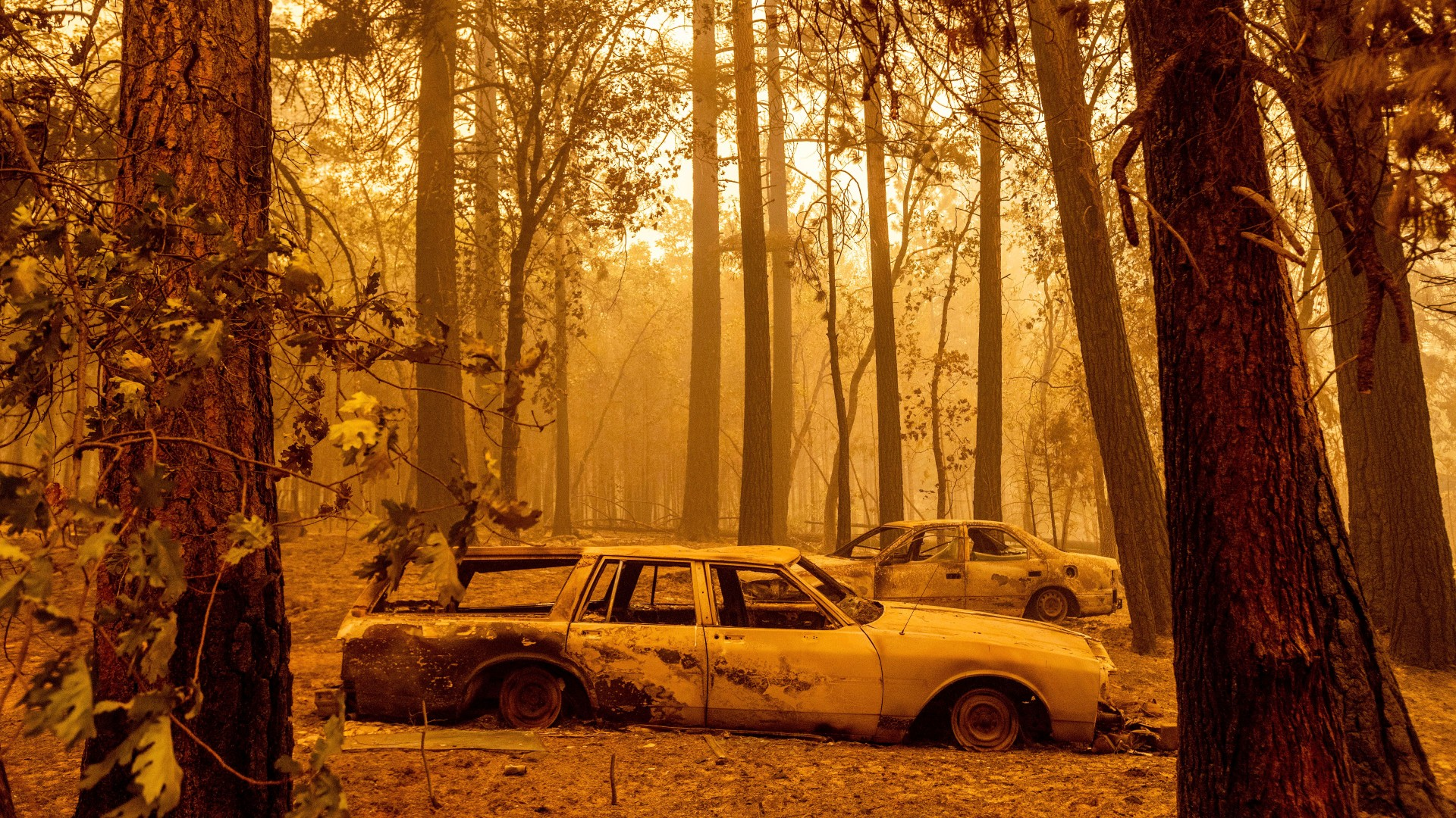 Following the Dixie Fire, scorched cars are seen in a clearing in the Indian Falls community of Plumas County, Calif., on Sunday, July 25, 2021. (AP Photo/Noah Berger)
