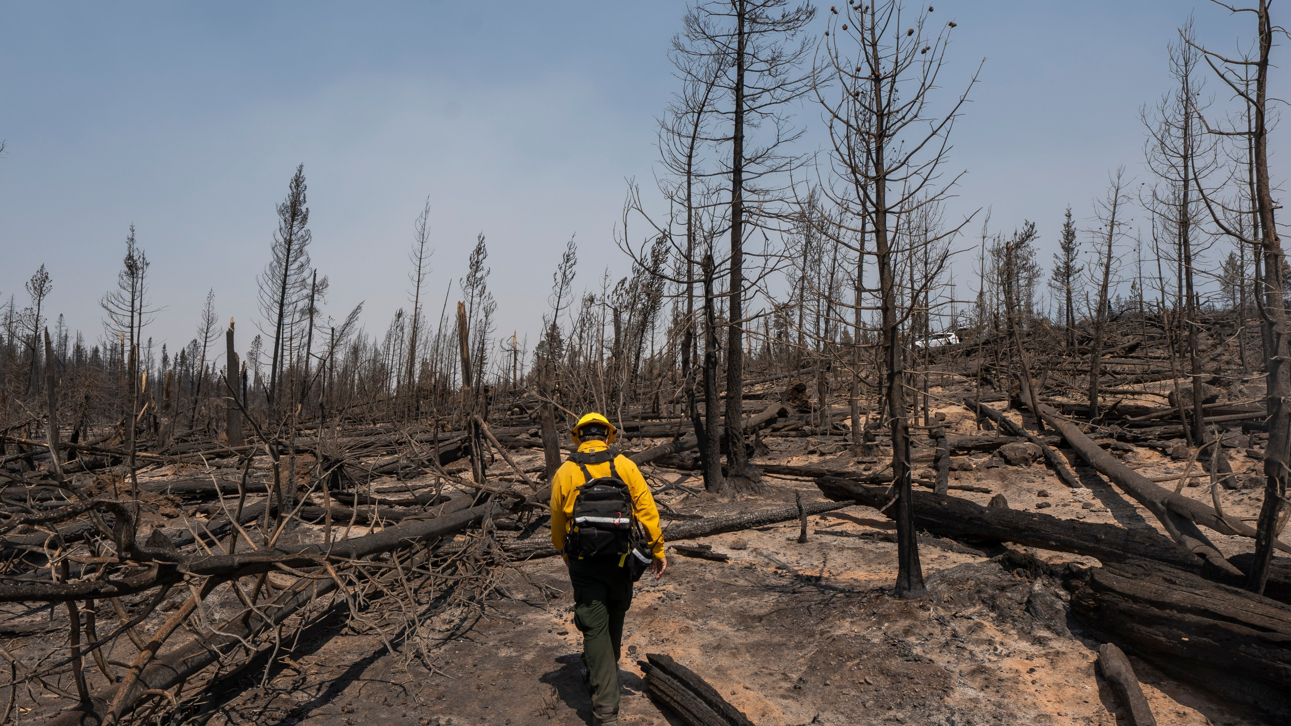 Marcus Kauffman, public information officer working on the Bootleg Fire, walks through burn damage July 23, 2021, near Paisley, Ore. (AP Photo/Nathan Howard)