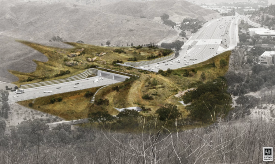 Artist rendering of a proposed $87-million mountain lion bridge spanning the 101 Freeway in Agoura Hills.(National Wildlife Federation / Living Habitats)