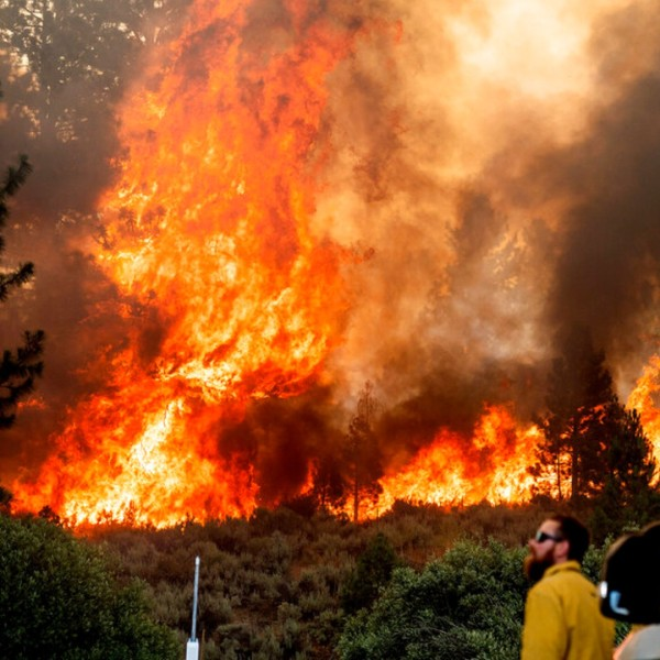 Firefighter Kyle Jacobson monitors the Sugar Fire, part of the Beckwourth Complex Fire, burning in Plumas National Forest, Calif., on Friday, July 9, 2021. (AP Photo/Noah Berger)
