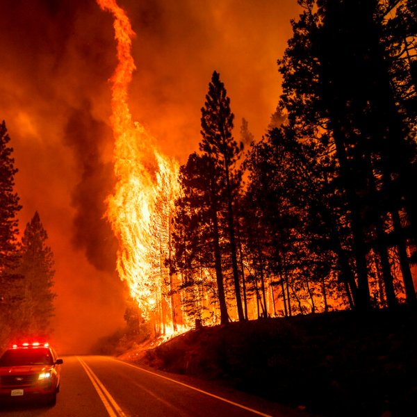 Flames leap from trees as the Dixie Fire jumps Highway 89 north of Greenville in Plumas County, Calif., on Tuesday, Aug. 3, 2021. (AP Photo/Noah Berger)