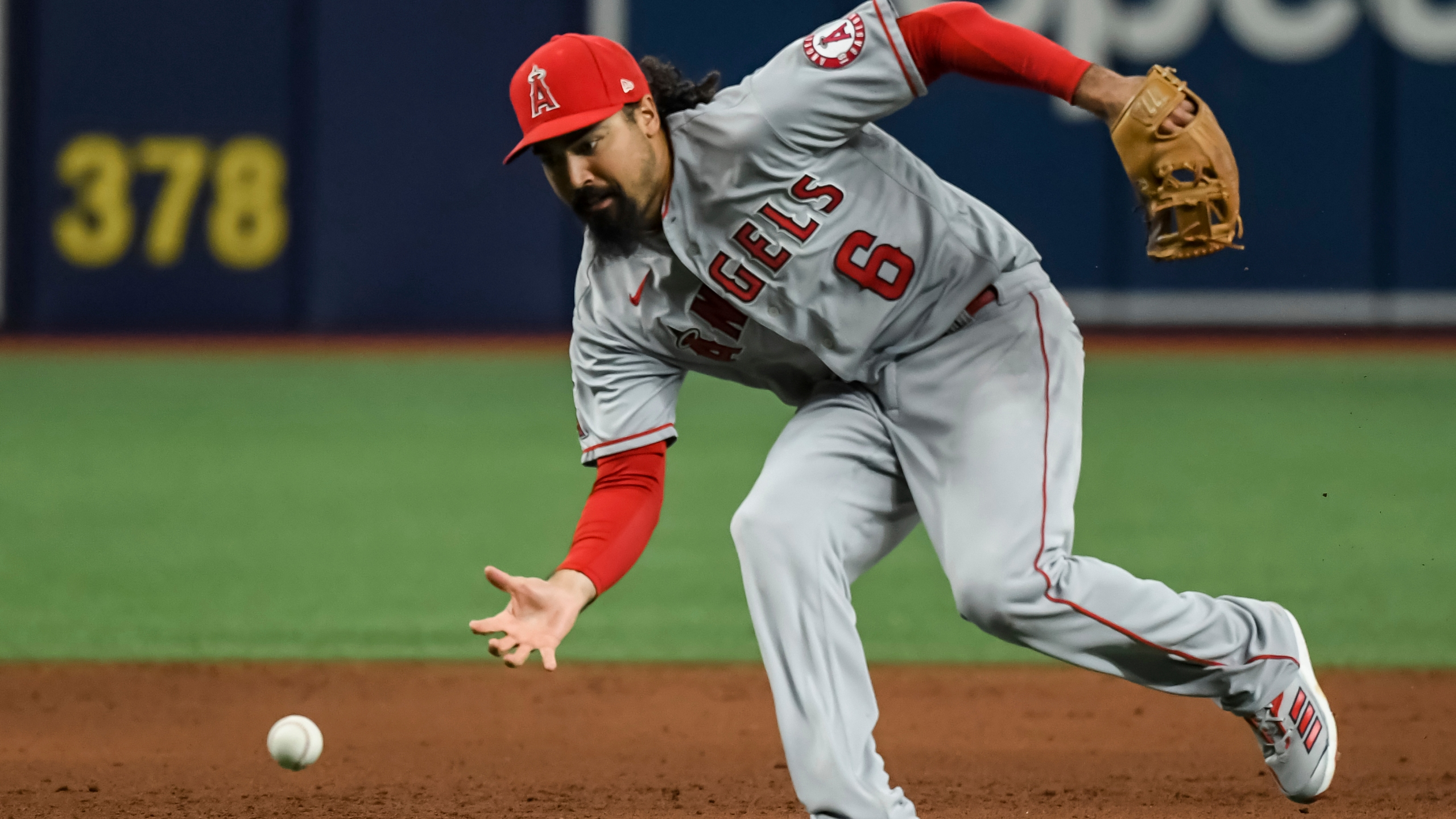 In this June 25, 2021, file photo, Los Angeles Angels third baseman Anthony Rendon reaches for a ball that went for an infield base hit by Tampa Bay Rays ' Kevin Kiermaier during the sixth inning of a game in St. Petersburg, Fla. (Steve Nesius/Associated Press)