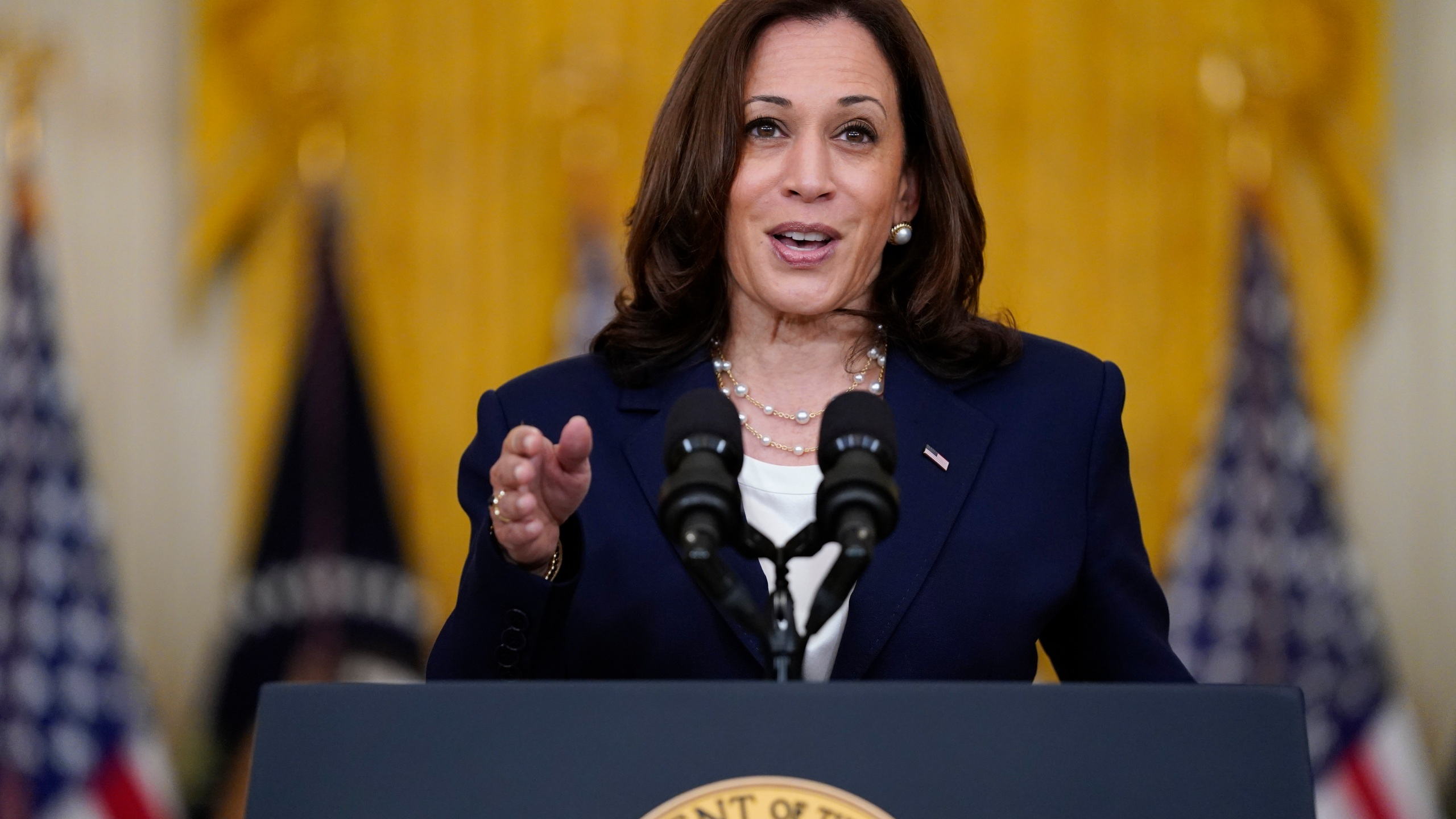 In this Aug. 10, 2021, file photo, Vice President Kamala Harris speaks from the East Room of the White House in Washington. (AP Photo/Evan Vucci, File)