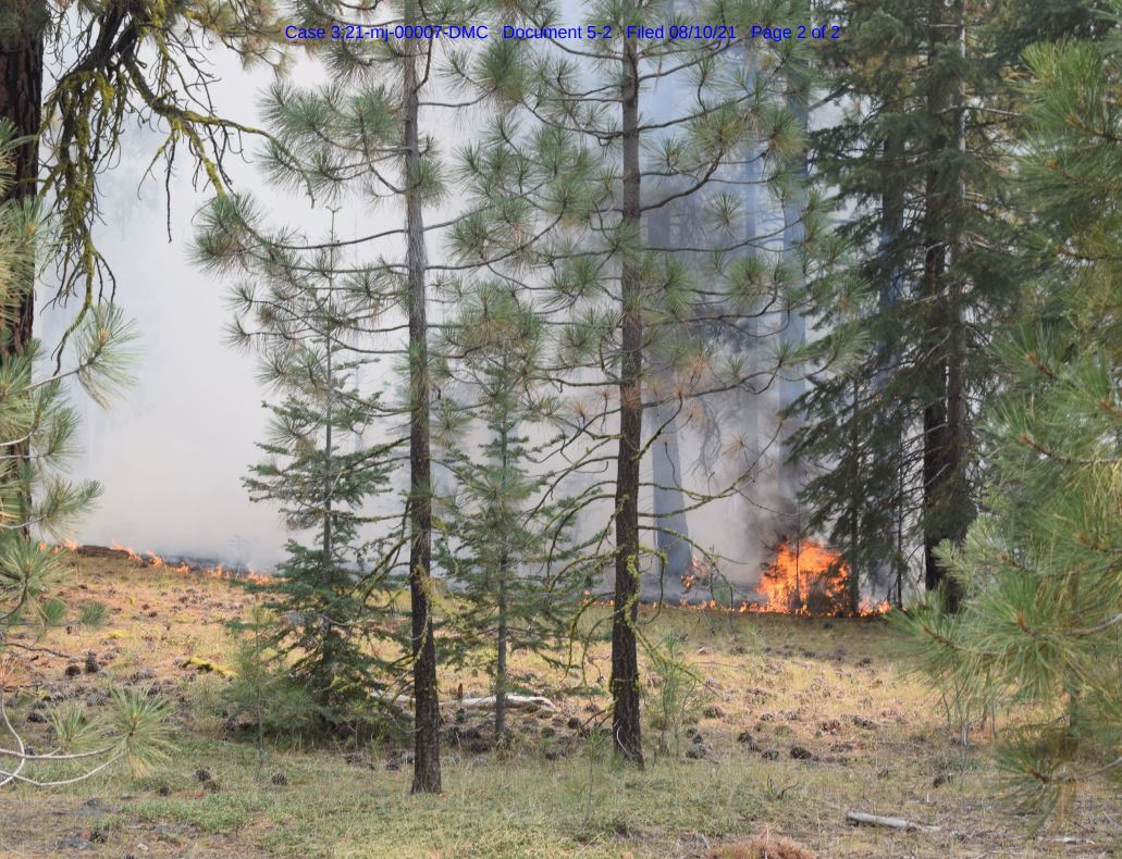 The Ranch Fire in Lessen County, one of several fires Gary Maynard is accused by federal officials of setting, is pictured. (U.S. Forest Service)