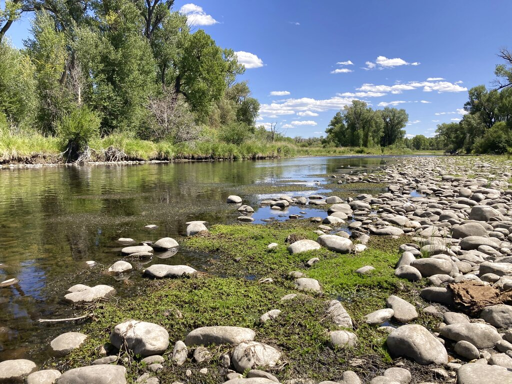 Exposed rocks and aquatic plants are seen alongside the North Platte River at Treasure Island in southern Wyoming, on Tuesday,Aug. 24, 2021. (AP Photo/Mead Gruver)