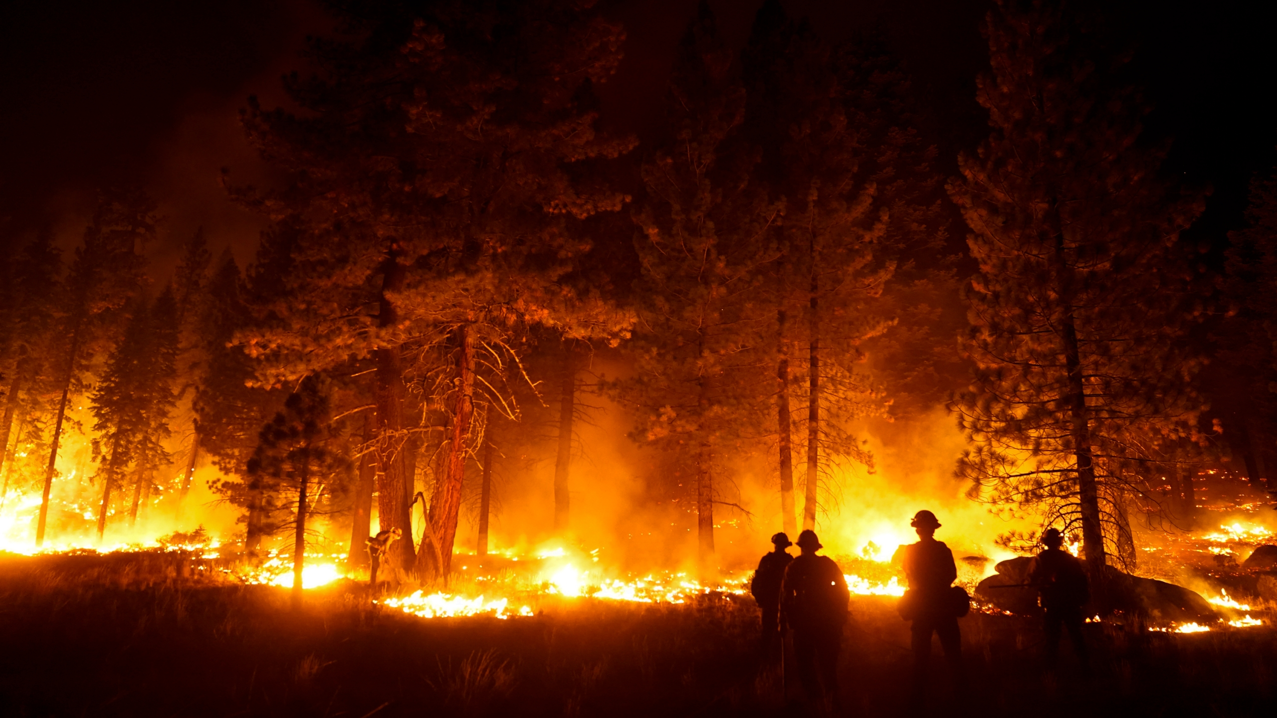 In this Sept. 1, 2021, file photo, a firefighter lights a backfire to stop the Caldor Fire from spreading near South Lake Tahoe, Calif. An unidentified firefighter has died of an illness while assigned to one of California's largest wildfires, authorities said Sunday, Sept. 5, 2021, marking the first death in a season that has seen blazes destroy thousands of buildings and force entire towns to flee. Edwin Zuniga with the California Department of Forestry and Fire Protection said he couldn't provide other details on the death. (AP Photo/Jae C. Hong, File)
