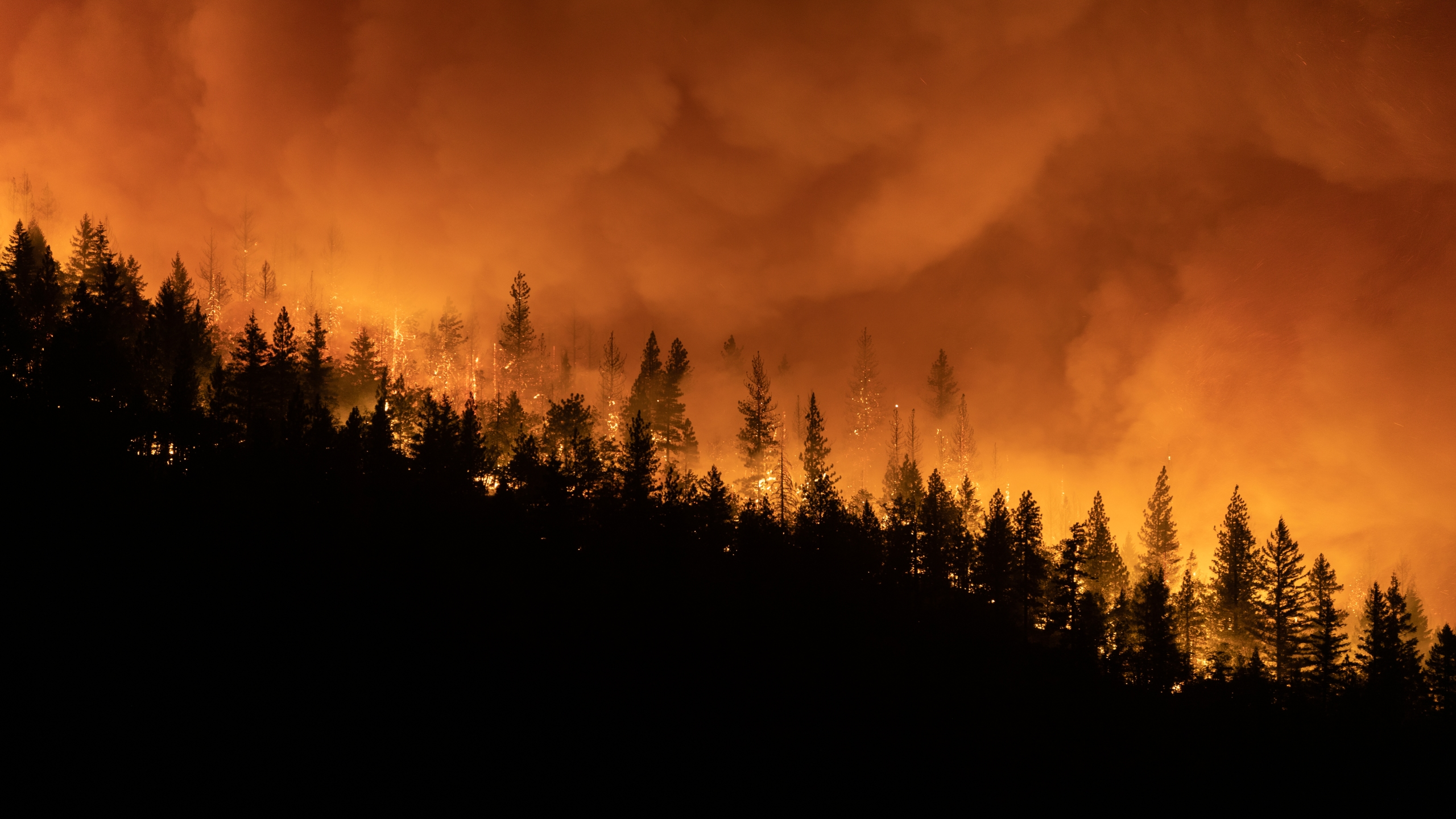 The Dixie Fire burns on a mountain ridge sending embers into the air on Aug. 5, 2021 in Greenville. (Trevor Bexon/Getty Images)