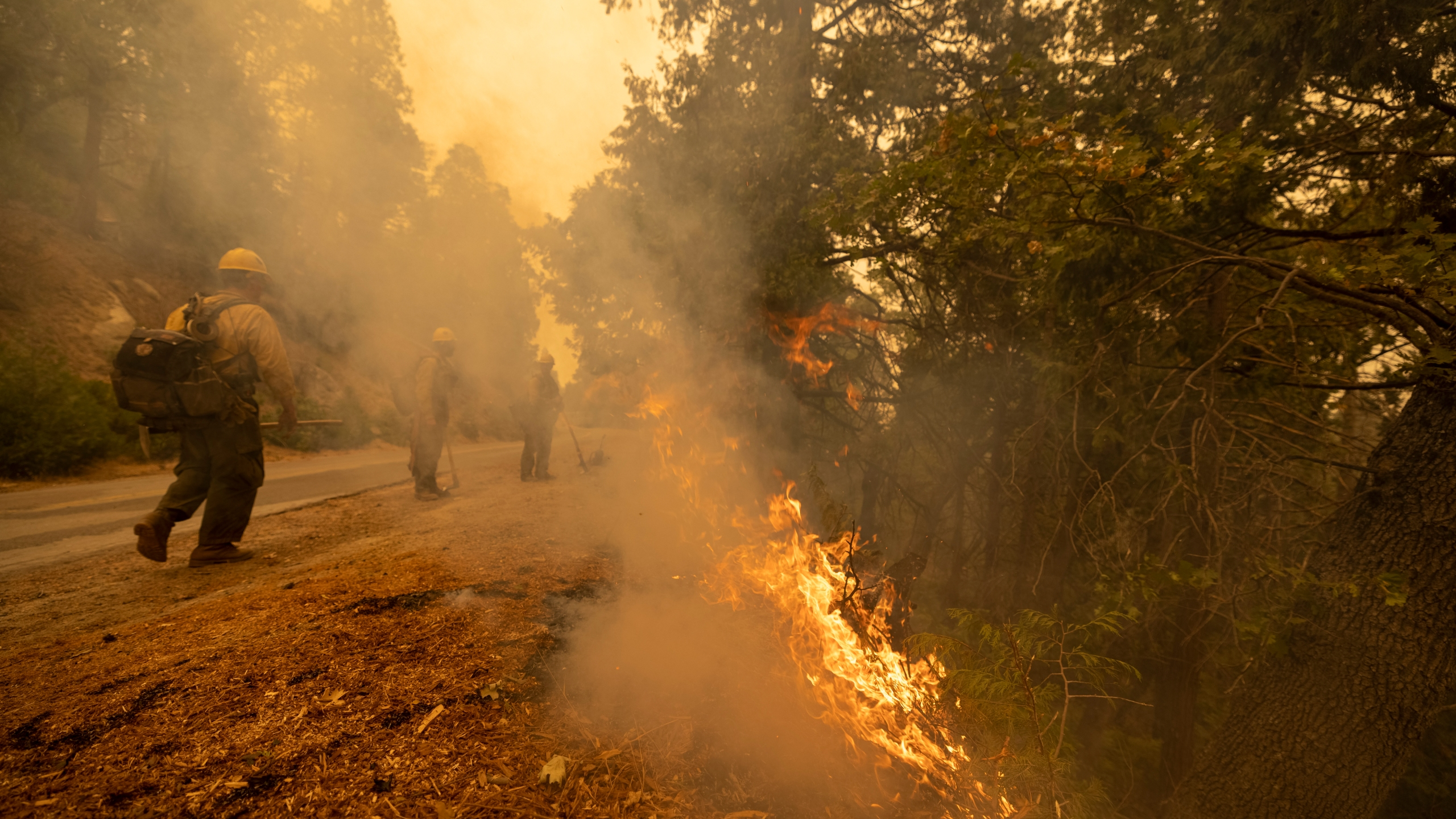 Firefighters tend to a backfire set to battle the Windy Fire on Sept. 25, 2021, south of California Hot Springs, California. (David McNew/Getty Images)