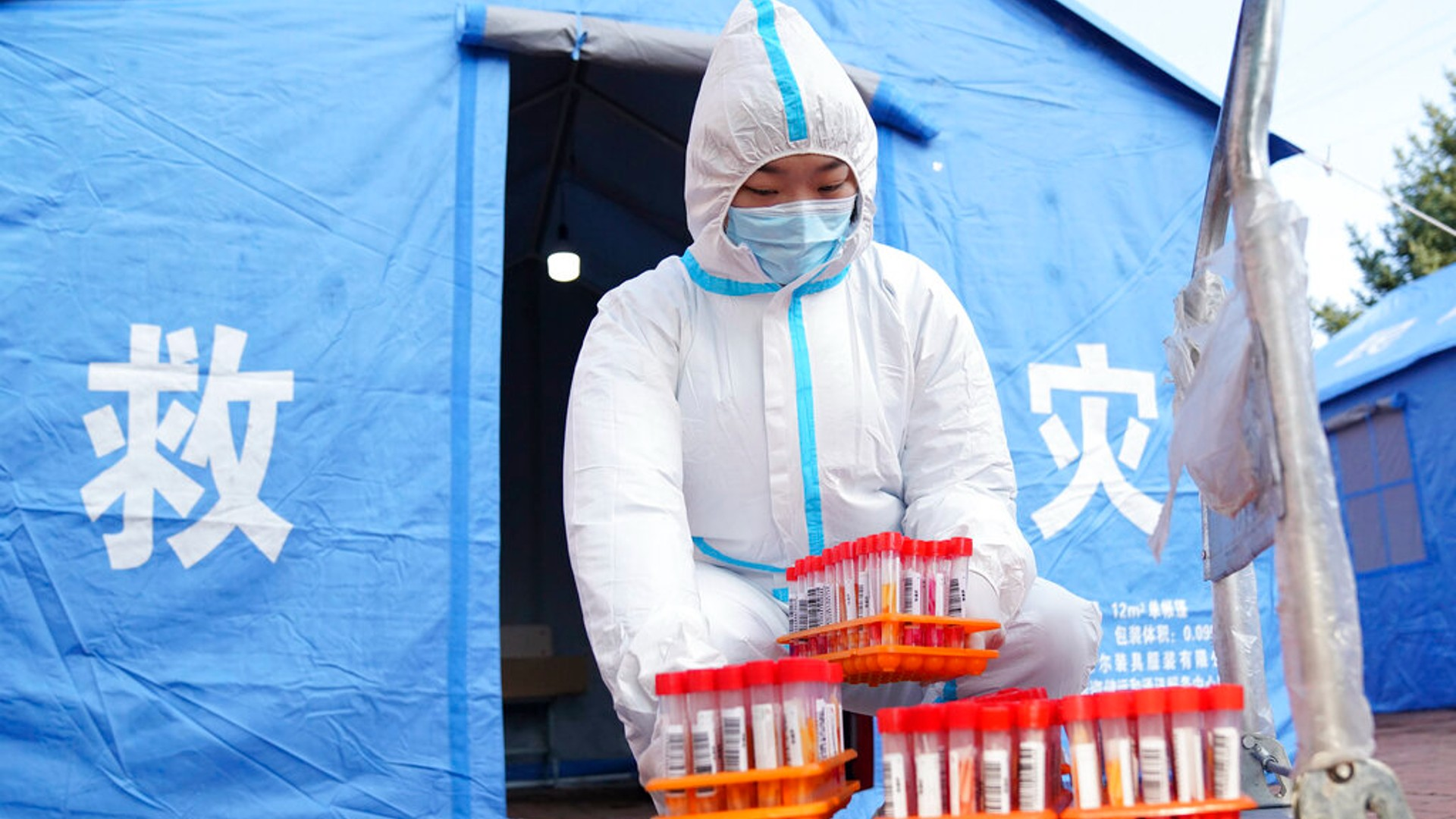 In this photo released by China's Xinhua News Agency, a worker in protective clothing handles COVID-19 test samples in Bayan County of Harbin city in northeastern China's Heilongjiang Province, Monday, Sept. 27, 2021. (Wang Jianwei/Xinhua via AP)