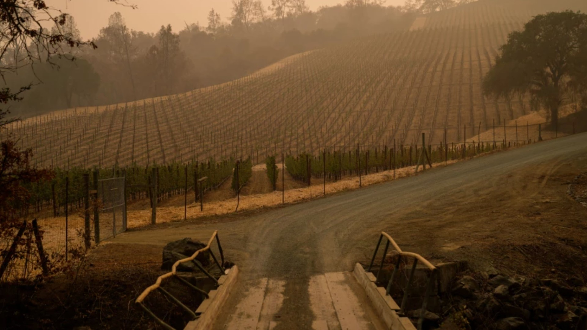 Somerston Estate Winery & Vineyards in St. Helena Calif., seen above on Sept. 30, 2020, was among the many wineries that did not produce a 2020 vintage due to the wildfire season.(Kent Nishimura / Los Angeles Times)