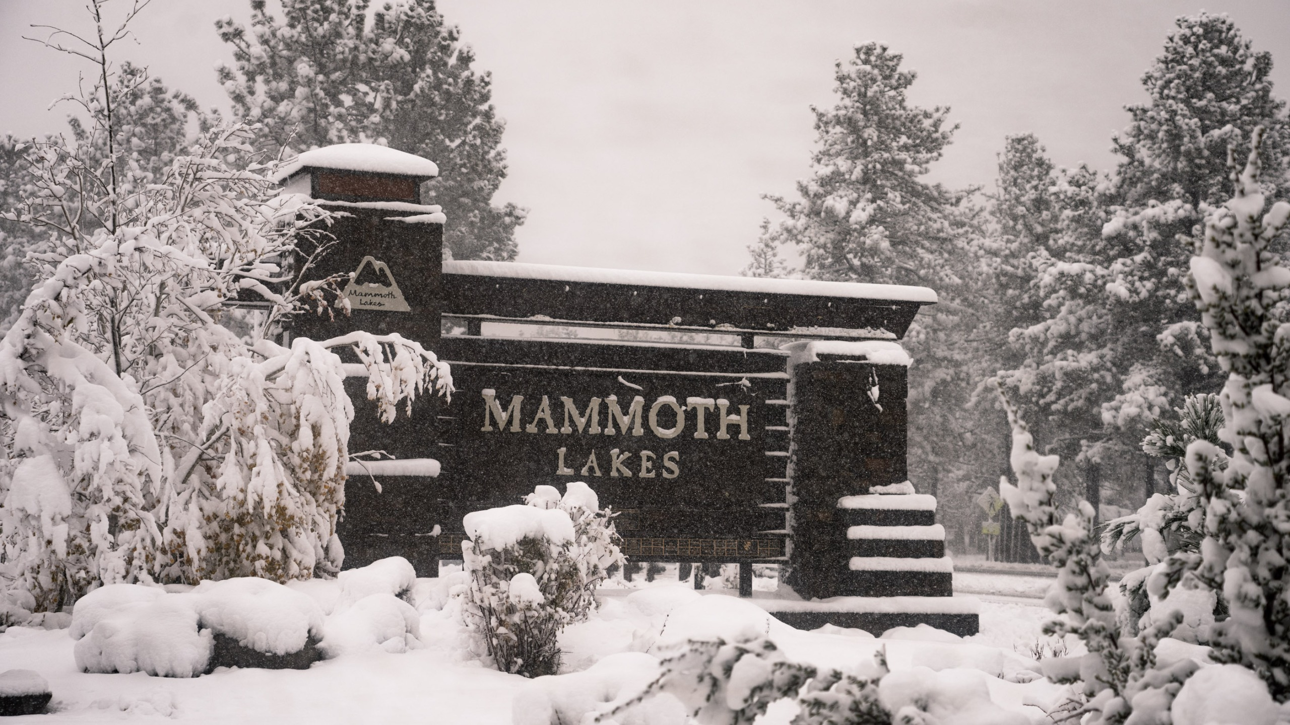 Mammoth Mountain received more than two feet of snow on Oct. 25, 2021. (MMSA/ Christian Pondella)