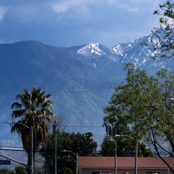A lightly dusted snow capped hilltop is seen behind palm trees in the San Fernando Valley section of Los Angeles on March 12, 2021. (AP Photo/Richard Vogel)