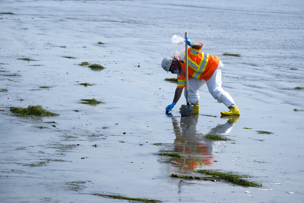 A worker in protective suit cleans the contaminated beach after an oil spill in Newport Beach, Calif., on Wednesday, Oct. 6, 2021. (AP Photo/Ringo H.W. Chiu)