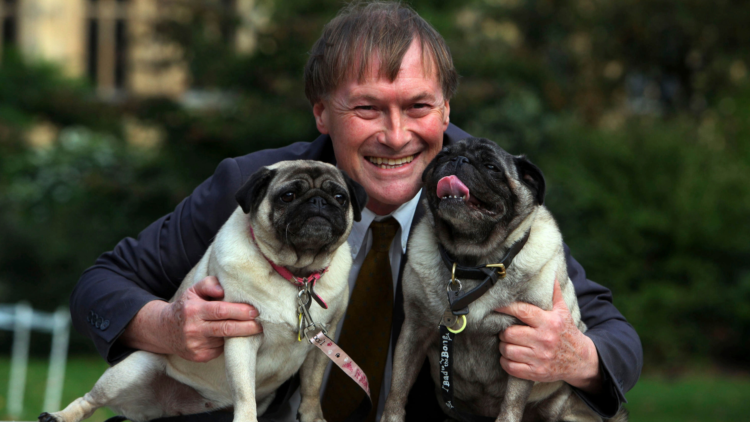 Conservative MP David Amess with his pugs, Lily and Boat at the Westminster Dog of the Year competition at Victoria Tower Gardens in London on Oct. 10, 2013. (Geoff Caddick/PA via AP)