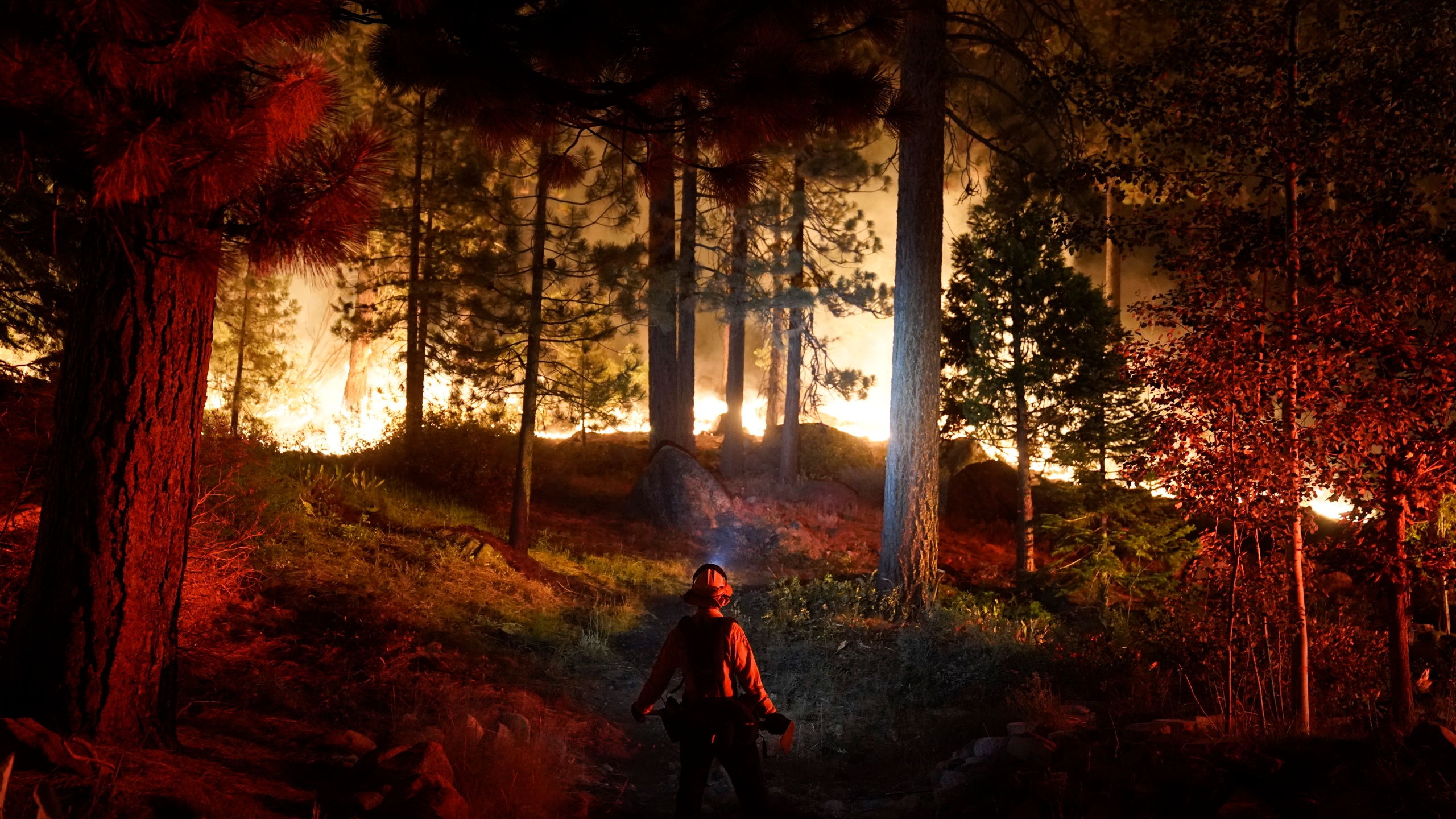 In this Aug. 30, 2021, file photo, a firefighter monitors the Caldor Fire burning near homes in South Lake Tahoe. (Jae C. Hong/Associated Press)