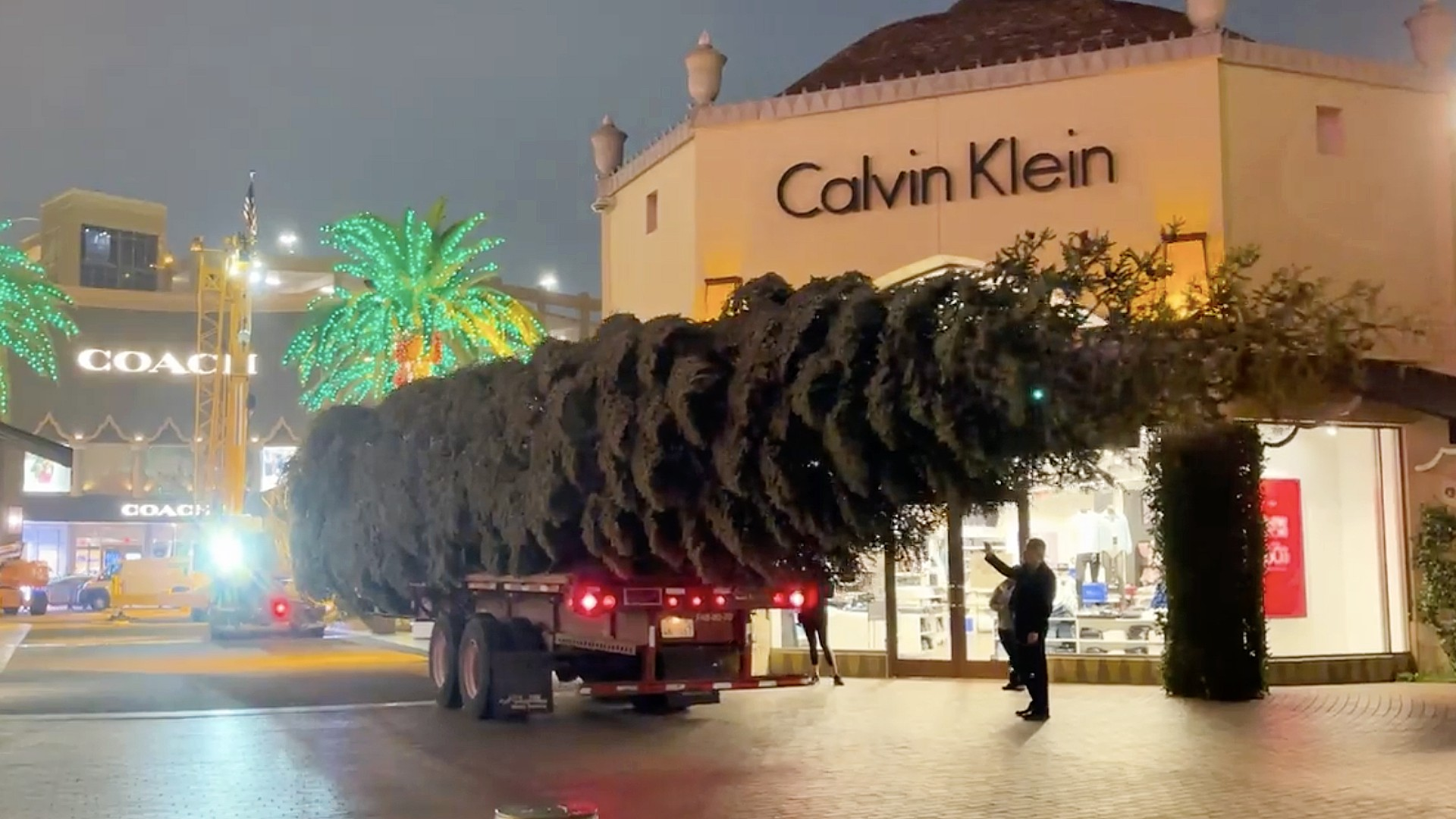 A 115-foot tall white fir arrives at Citadel Outlets on Oct. 22, 2021. (Citadel Outlets)