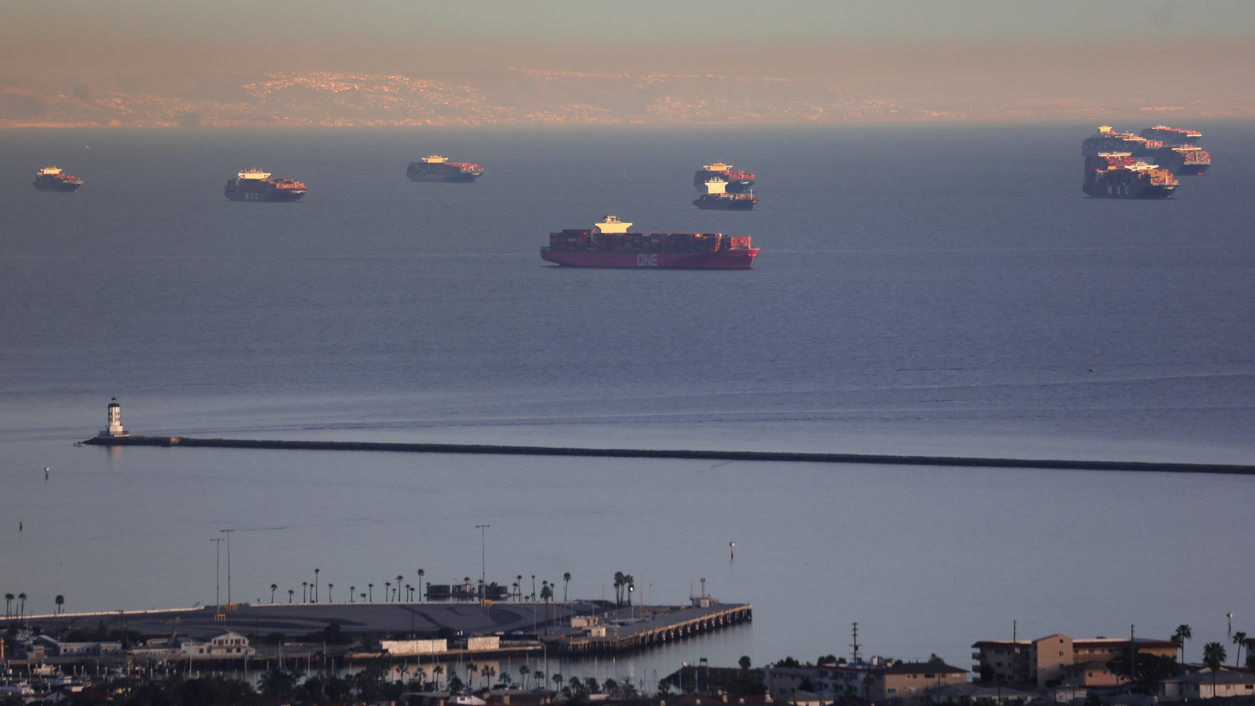 Container ships and tankers are anchored close to the ports of Los Angeles and Long Beach on Feb. 1, 2021 in San Pedro. (Mario Tama/Getty Images)