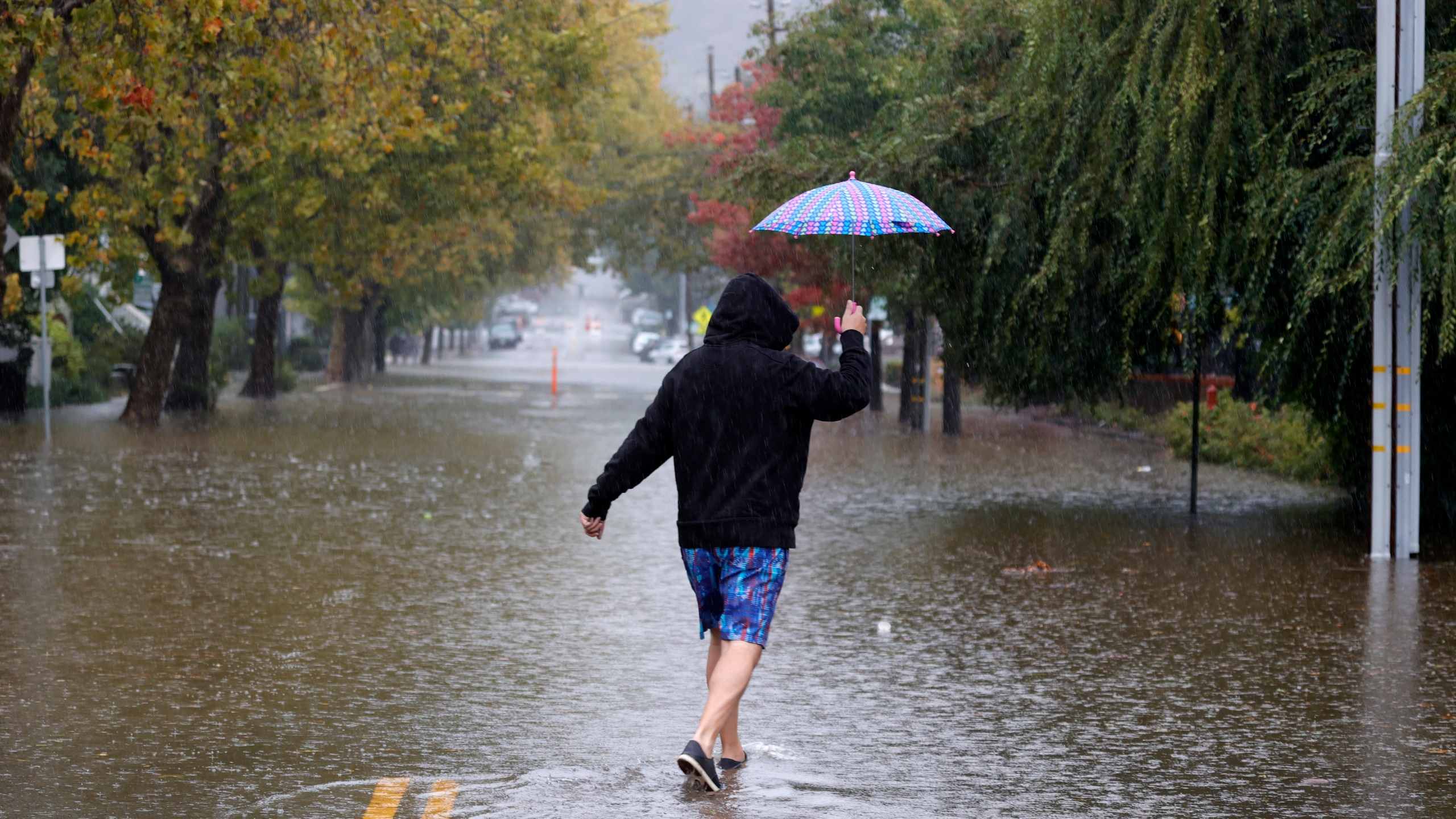 A pedestrian carries an umbrella as he walks on a flooded street on Oct. 24, 2021 in San Rafael. (Justin Sullivan/Getty Images)