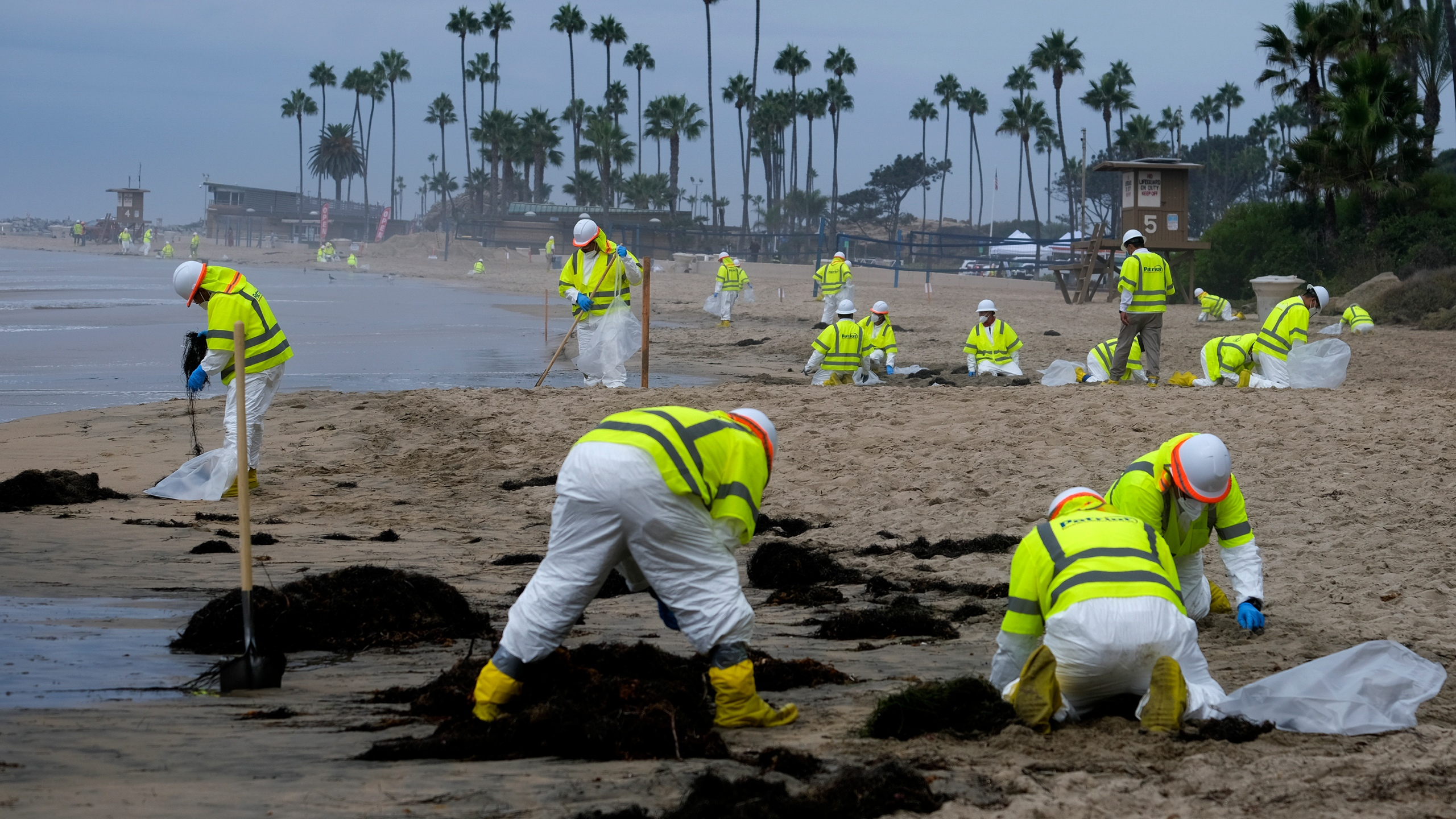 In this Oct. 7, 2021, file photo, workers in protective suits clean the contaminated beach in Corona Del Mar after an oil spill in Newport Beach, Calif. A group of environmental organizations is demanding the Biden administration suspend and cancel oil and gas leases in federal waters off the California coast after a recent crude oil spill. The Center for Biological Diversity and about three dozen organizations sent a petition Wednesday, Oct. 20, 2021, to the Department of the Interior, arguing it has the authority to end these leases. (AP Photo/Ringo H.W. Chiu)